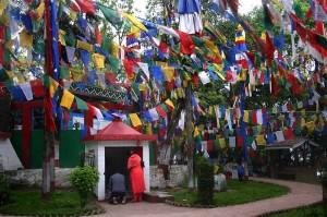 Буддистсткий храм в Дарджилинге